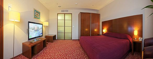 LUX ROOM WITH ONE KING SIZE DOUBLE BED