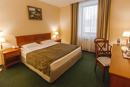 STANDARD ROOM WITH ONE KING SIZE DOUBLE BED